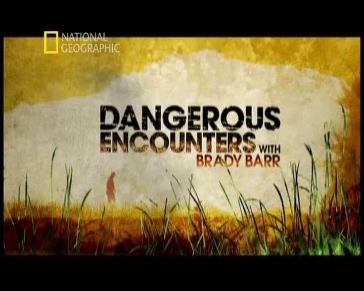 National Geographic - Tehlikeli Karşılaşmalar Boxset 28 Bölüm DVBRIP Türkçe Dublaj